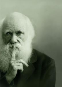 Copia-di-darwin-bg